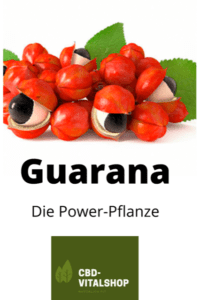 Power-Pflanzen Guarana